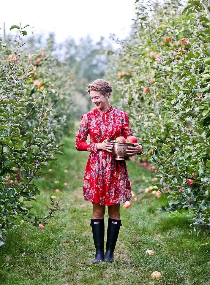 Blogger Bella Bucchiotti of xoxoBella is wearing a Ralph Lauren Denim & Supply dress and Hunter boots at an apple orchard.