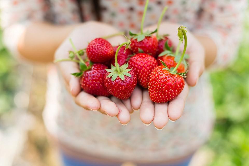 Blogger Bella Bucchiotti of xoxoBella.com shares a recipe for gluten free strawberry crumble.
