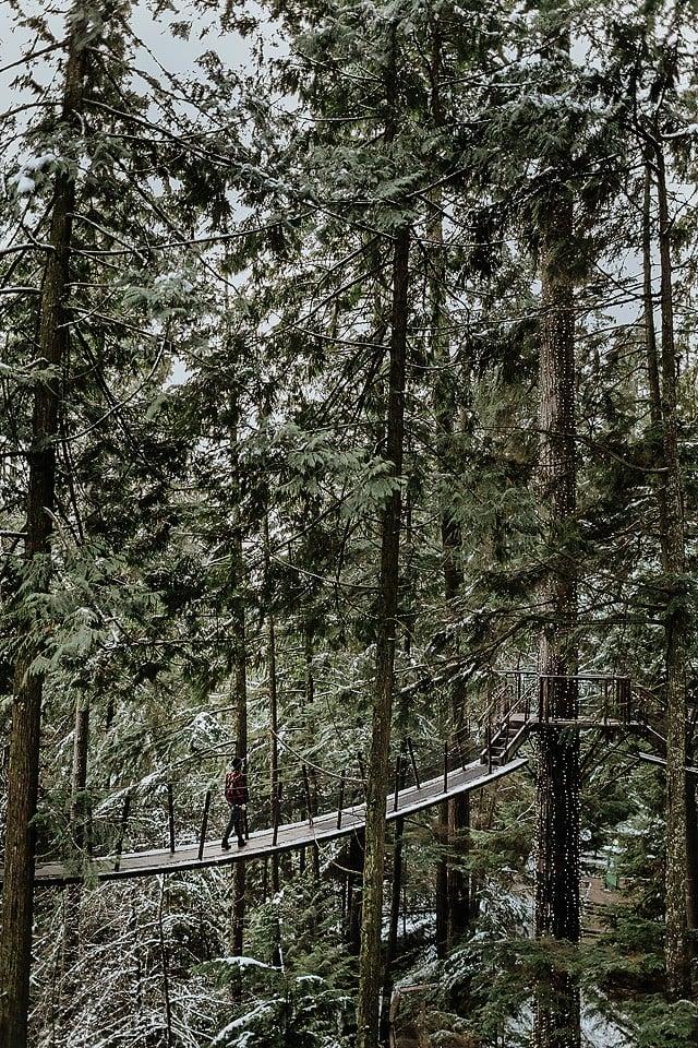 Blogger Bella Bucchiotti of xoxoBella.com shares her trip to capilano suspension bridge