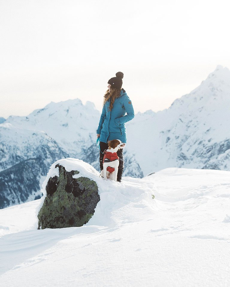 Blogger Bella Bucchiotti of xoxoBella.com shares her back country winter helicopter flight with her Brittany Spaniel Beau with Compass Helicopters.