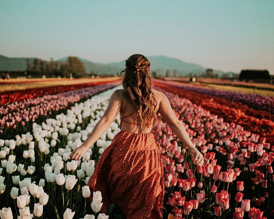 Blogger Bella Bucchiotti of xoxoBella.com shares her time at the tulip festivals in Chilliwack, BC and Abbotsford, BC.
