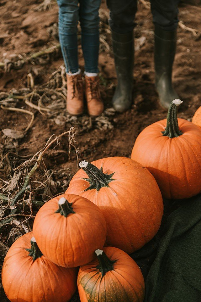 Lifestyle blogger, Bella Bucchiotti of xoxoBella shares her list of fabulous fall date ideas that you need to try out. You will love these autumn date ideas.