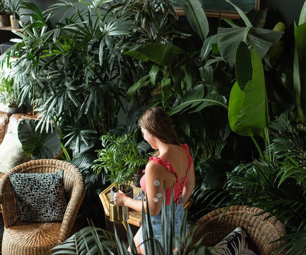 Lifestyle blogger, Bella Bucchiotti of xoxoBella shares tips and tricks to keep your plants alive.