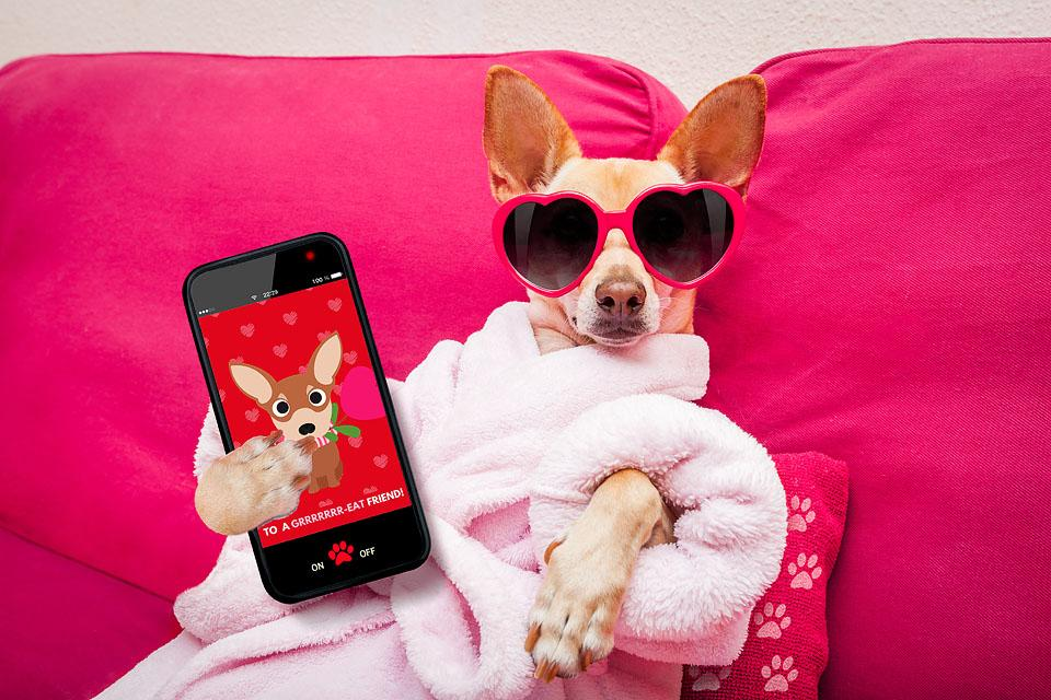 Lifestyle blogger, Bella Bucchiotti of xoxoBella, shares some free printable Valentine's cards. You can choose from two version of these printable dog Valentine's cards.