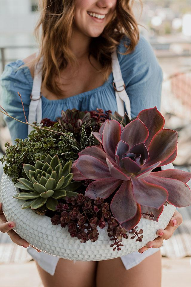 Lifestyle blogger, Bella Bucchiotti of xoxoBella, shares all the things every plant parent knows. All the plant moms can relate to these!