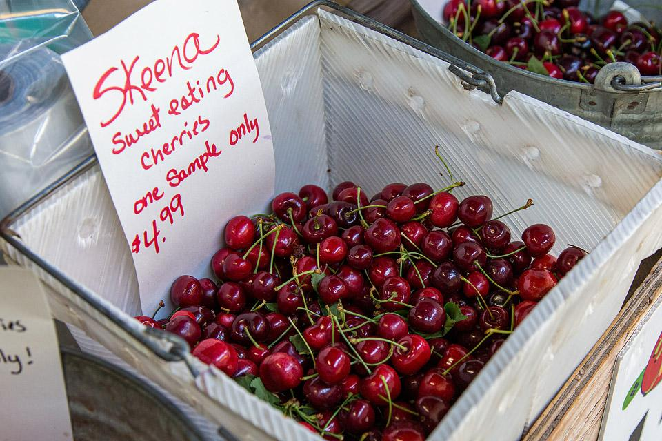 Food blogger, Bella Bucchiotti of xoxoBella, shares about cherry season in BC and WA and the best way to choose cherries.