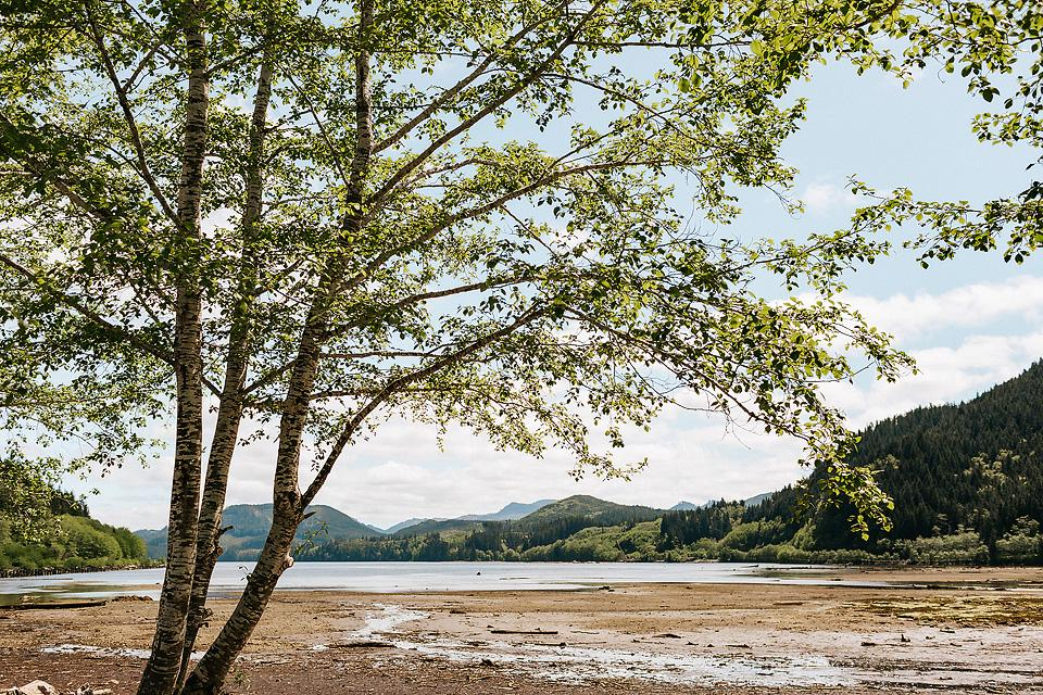 Travel blogger, Bella Bucchiotti of xoxoBella, shares a guide to Vancouver Island North to help you plan a road trip to see all the hidden gems, adventures and activities.