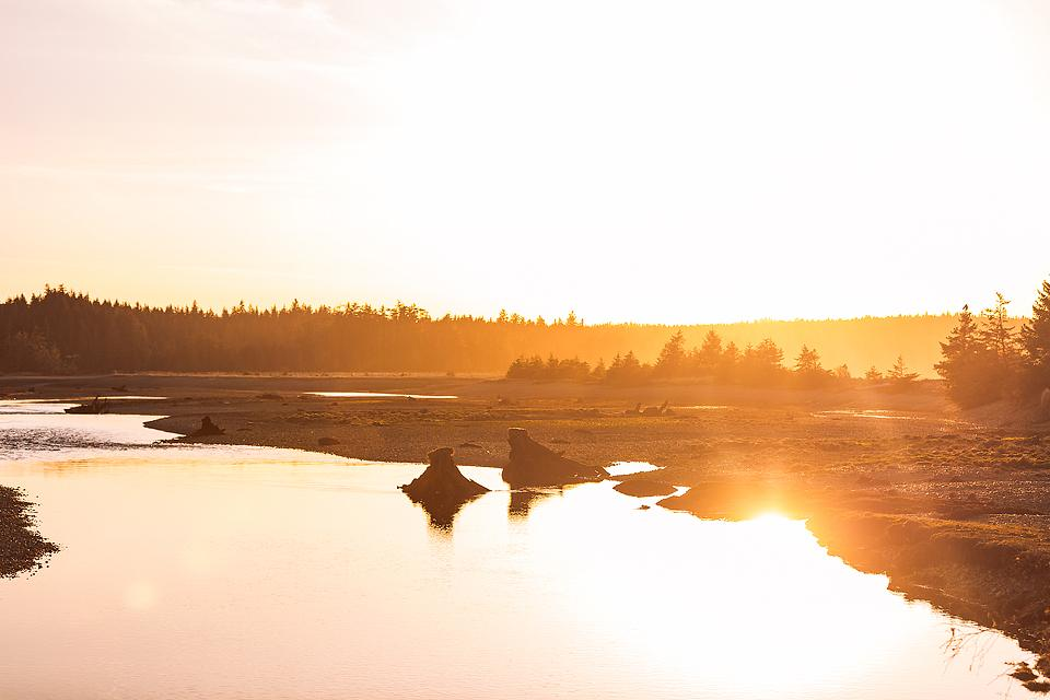 Travel blogger, Bella Bucchiotti of xoxoBella, shares tips for planning a Vancouver Island North road trip to see all the coolest places on the Island.