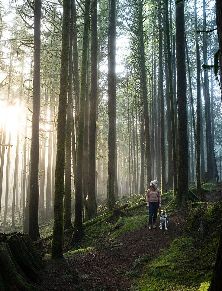 Pet blogger, Bella Bucchiotti of xoxoBella, shares a guide to hiking with your dog and the best tips for hiking with dogs.