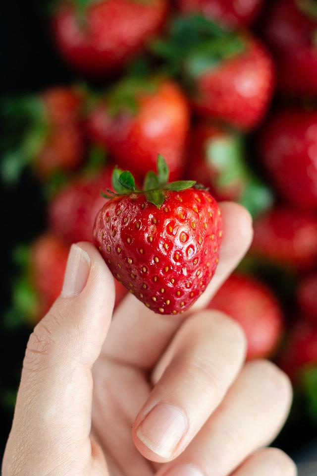 Lifestyle and food blogger, Bella Bucchiotti of xoxoBella, shares a guide to strawberries in BC and WA and tips for strawberry season.