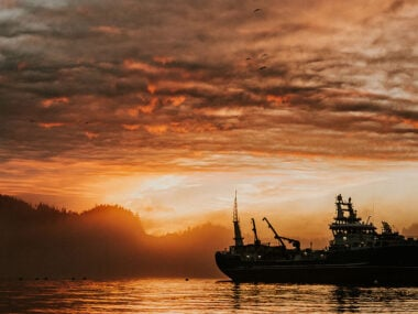 Travel blogger, Bella Bucchiotti of xoxoBella, shares a North Vancouver Island travel guide. There are so many hidden gems in the North Island British Columbia.