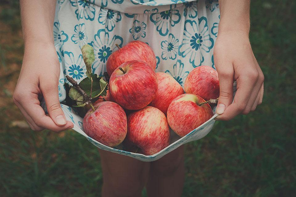 Lifestyle blogger, Bella Bucchiotti of xoxoBella shares the best apple captions. Also, all the best apple puns and apple quotes for our orchard photos.
